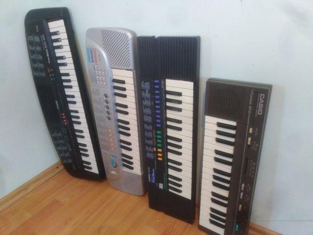 Orga pian CASIO claviatură polifonică mic