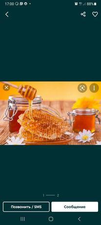 Мёд , мед, бал, омарта