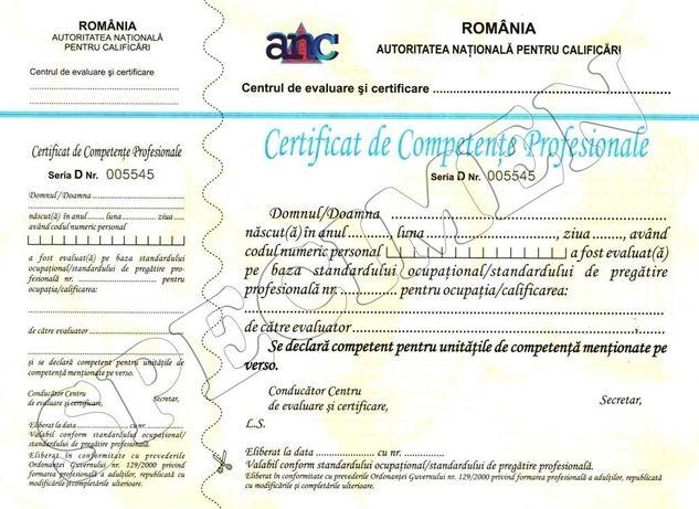 Certificate calificare/Cursuri