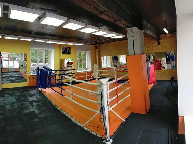 Единоборства и бокс в фитнес клубе Terrasport