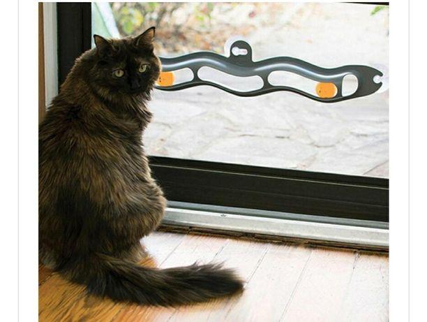 Jucarie pisici