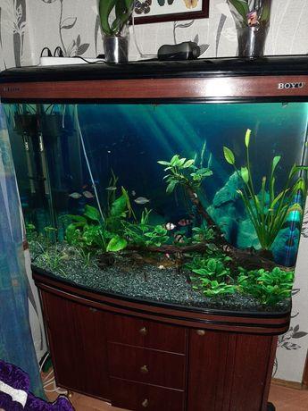 Продам заводской аквариум BOYU.