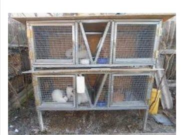 Делаю домики для кроликов на дому с выездом подручными средствами