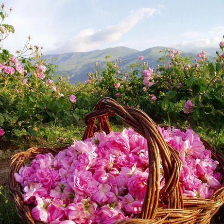 Розова вода натурален продукт