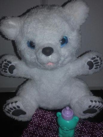 Ursuletul polar Sawyer