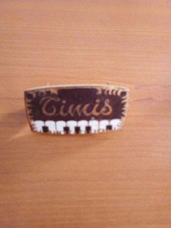 Emblema acordeon timis