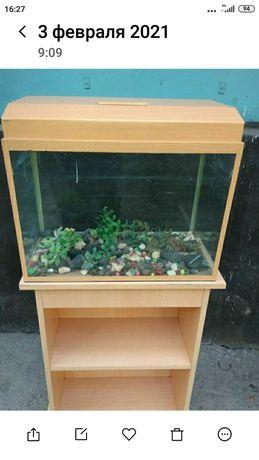 Продам большой аквариум.