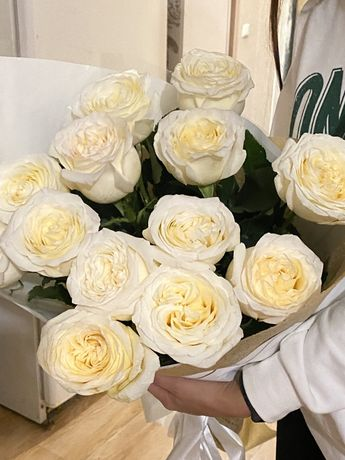 Роза 13 шт