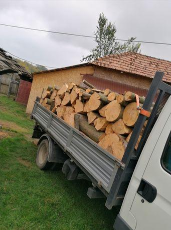 Lemne foc stejar, fag, carpen, salcam, Brad si lemne uscate