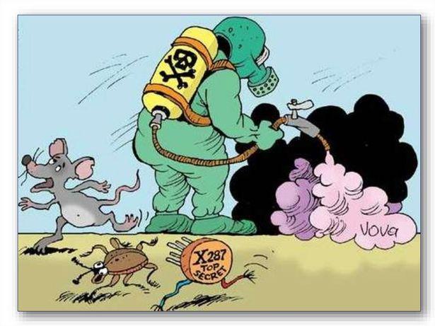 Дезинфекция клопов, тараканов мышей крыс