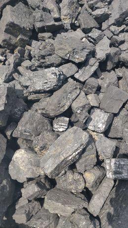 Уголь рапид эколог