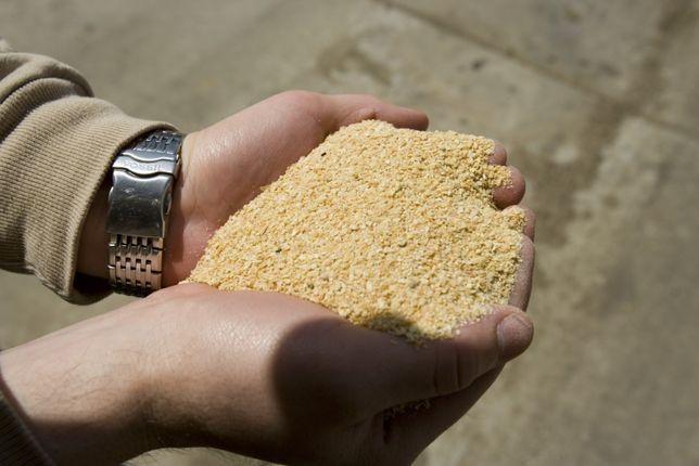 Șrot de soia pentru furajare