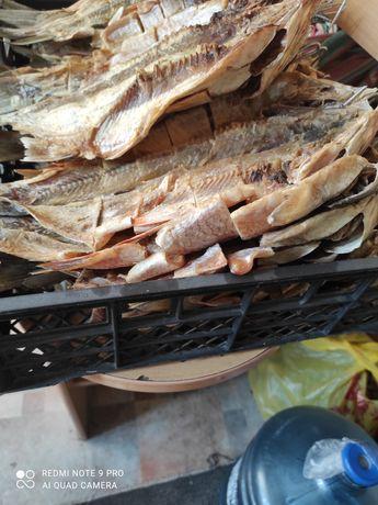 Рыба сушенная язь