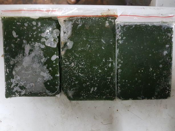 Вольфия - прекрасный корм для аквариумных рыб. В ее веществе содержитс