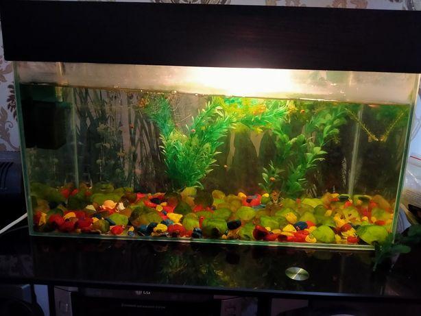 Продам аквариум.20 литров.за 15000тнг.