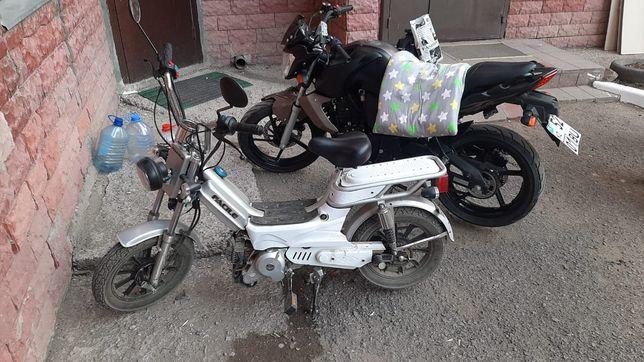 Срочно продам мопедь мотоцикл