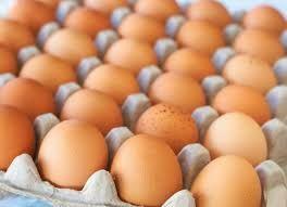 Инкубационное яйцо бройлер Арбор айкрес (розничная продажа)