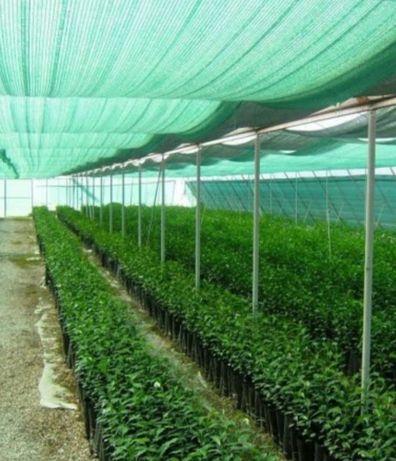 Сетка для защиты растений от солнца,затеняющая сетка, сетка притенения