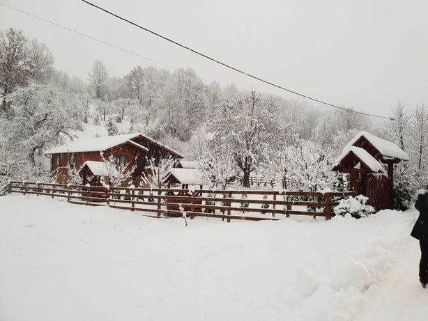 Cabana de Inchiriat de Craciun si 1 Decembrie