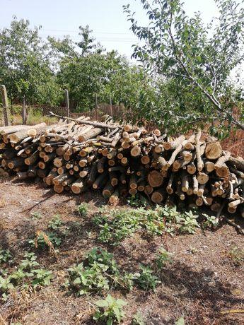 Vând lemne salcâm la preț avantajos
