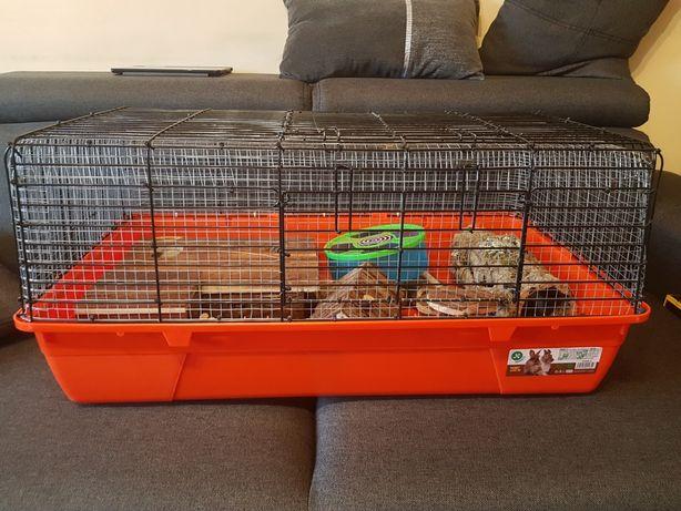 Cusca hamster + accesorii