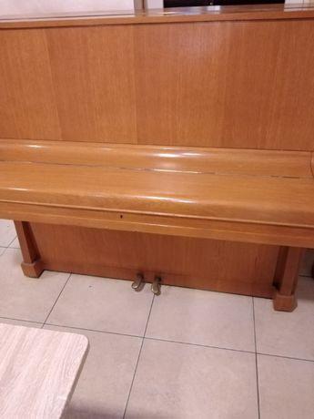 Pianina nemțească HAIN