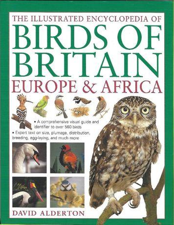 Super enciclopedie ilustrata PASARI din Anglia, Europa si Africa