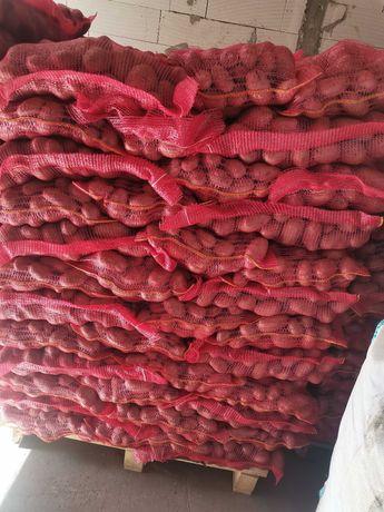 Cartofi consum rosu