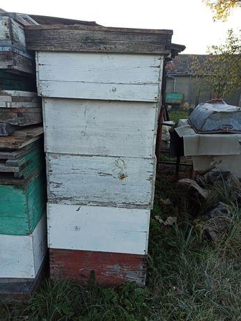Lazi stupi / materiale apicole: fund, podisor, capac