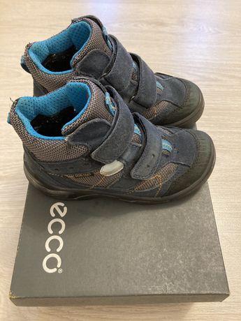 Сапоги Ecco ботинки детские полусапожки на мальчика
