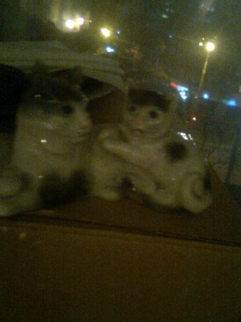 Lot 3: bibelou portelan 2 pisici gri/alb,15 cm,serie+o pisica+1 iepure