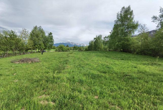 Teren la 2 km de castelul Bran