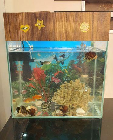 Аквариум с рыбами