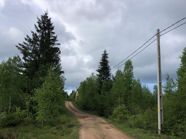 Teren Călățele Pădure