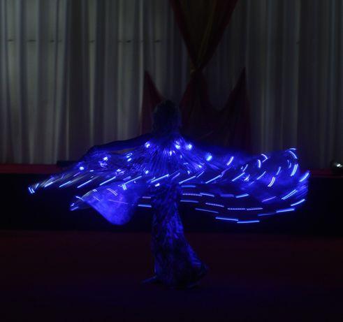 Восточные танцы, светодиодное шоу