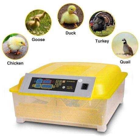ПРОМОЦИЯ инкубатор Автоматичен 12 яйца
