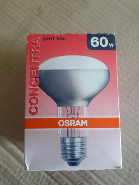 лампы и прожекторы