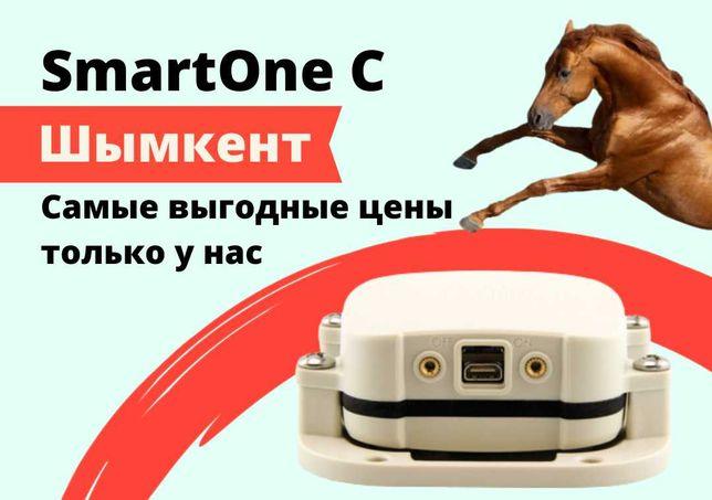 GPS трекер для лошадей в Шымкенте