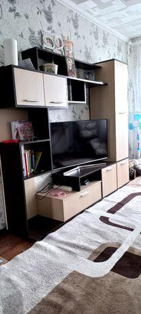 Продам стенку и телевизор