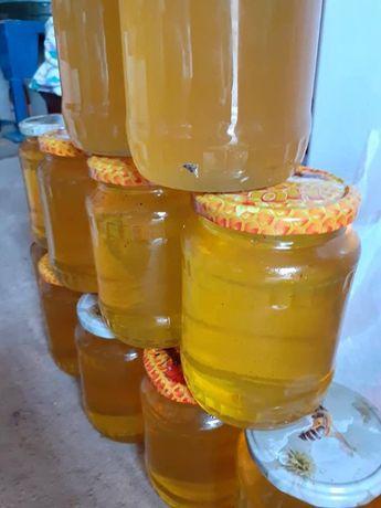 de vinzare miere de albine