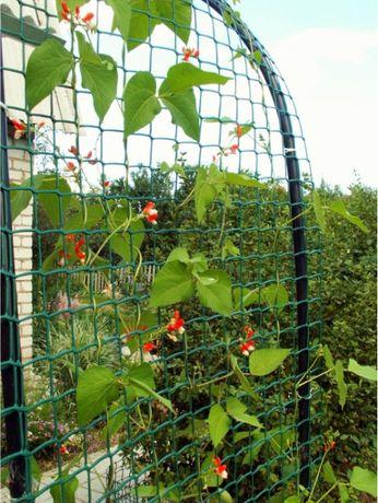 Сетка для вьющихся растений, для плетистых роз, для винограда