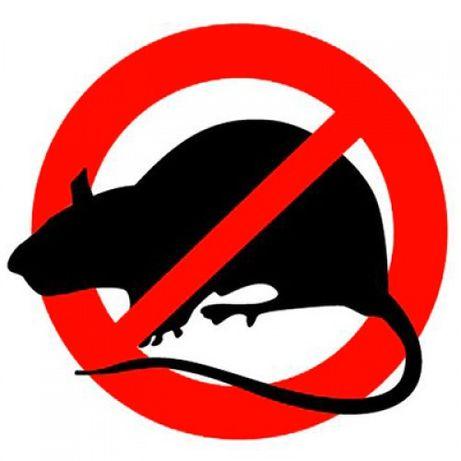 Удаление кpыс мышей насекомых для организаций, c гарантией