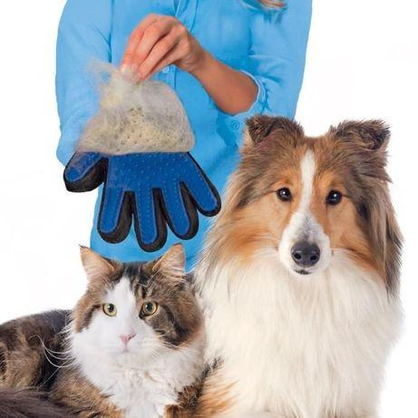 Manusa perie animale companie caini pisici ...