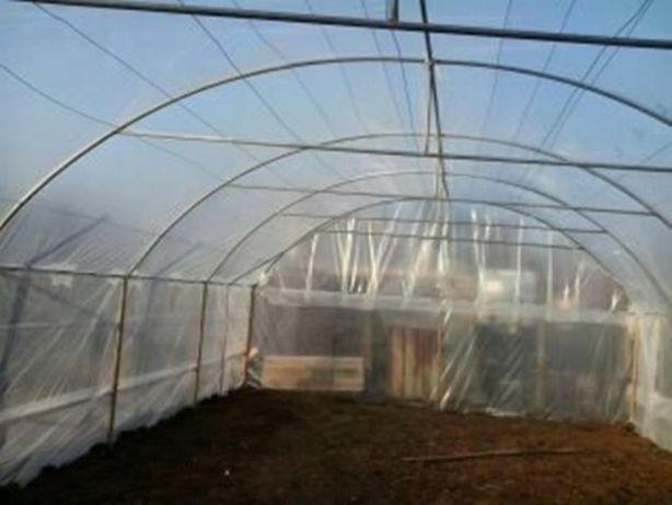 Solarii legume  de vânzare