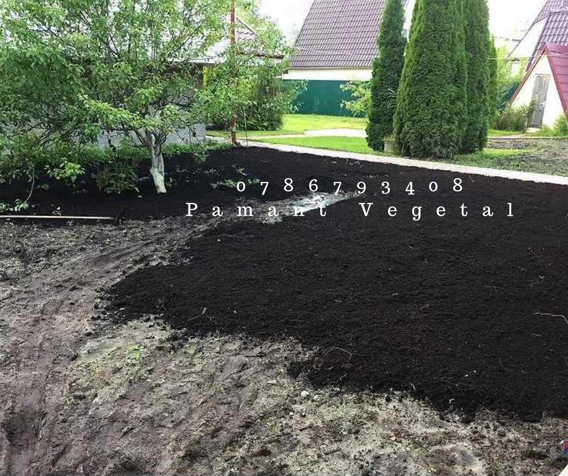 Pamant vegetal pentru Gazon Pamant de gradina Pamant Vegetal Negru