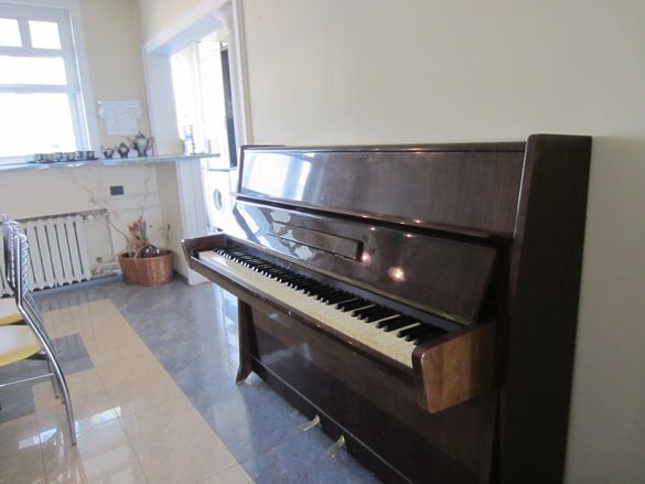 Пиано Petrof