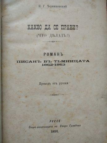 Чернишевски, Какво да се прави 1891 г