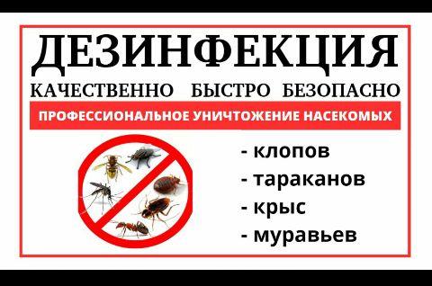 Качественная обработка от Насекомых /Сертификаты /Лицензия /Гарантия /