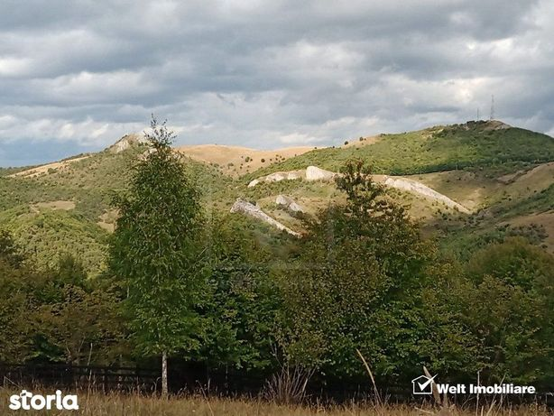 Baisoara - Muntele Filii, acces prin Moara de Padure 4324 mp, deosebit