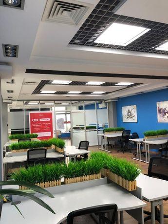 Аренда офиса под мастер-классы и семинары